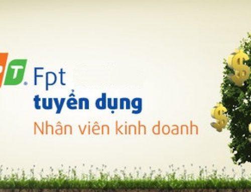 Tuyển nhân viên kinh doanh FPT tại Thái Bình – lương hấp dẫn