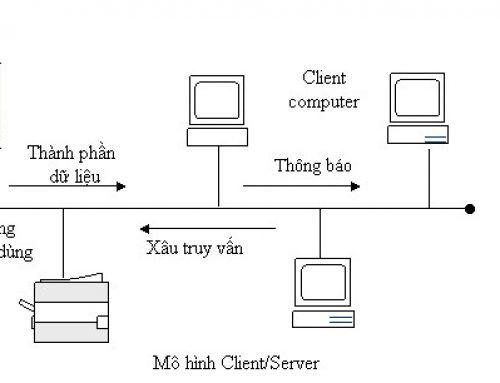 Mô hình mạng máy tính phổ biến hiện nay